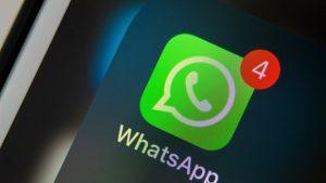 whatsapp intunecat