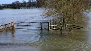 Hidrologii avertizează: COD PORTOCALIU de inundații pe râurile din Argeș și Vâlcea