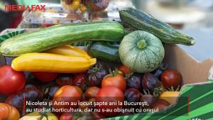 Un cuplu a părăsit Capitala pentru Moldova și s-a mutat la țară ca să facă agricultură bio. Cum funcționează afacerea