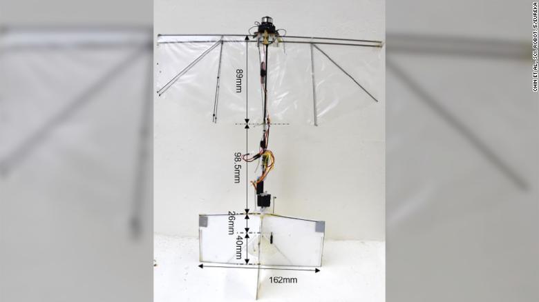 Robotul care poate plana și se poate roti, exact ca o pasăre. Ce plănuiesc cercetătorii pentru el