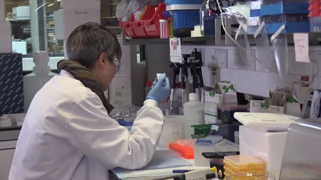 Vaccinul anti-COVID-19, mRNA-1237, are rezultate promițătoare. Câți pacienți vor fi testați în faza doi