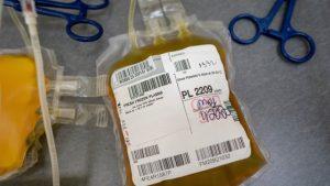 Donează sânge sau plasmă cu anticorpi Covid şi primeşti un bilet la Untold sau Neversea 2021