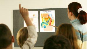 CCR a decis: Educație sexuală în școli, doar cu acordul părinților