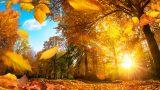 Meteorologii anunță vreme caldă până la jumătatea lunii octombrie