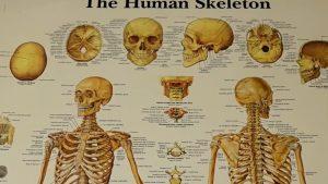 Cum previi osteoporoza și care sunt semnele acestei boli