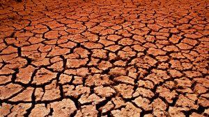 65% din terenul agricol din România, afectat de secetă. Se irigă cu pompe din 1985