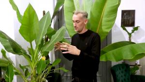 Showroom cu plante exotice la Iași. Prețurile pot ajunge până la 3.500 de lei