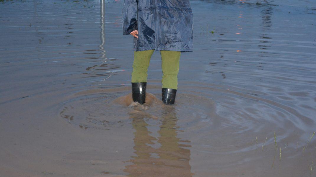 Cod portocaliu de ploi în Constanța, Ialomița și Călărași. Alte 12 județe sunt sub Cod galben