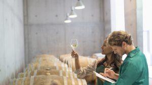 România este pe locul 6 în topul european al celor mai mari producători de vin