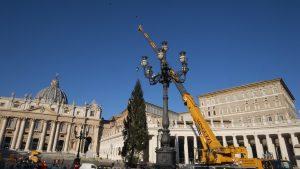 Crăciun la Vatican 2020: Bradul a fost adus în Piața Sfântul Petru. Cum va fi decorat anul acesta
