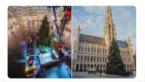 Bradul de Crăciun din Bruxelles, înalt de 18 metri, va fi împodobit azi. Târgul de Crăciun, anulat