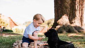 Lupo, câinele lui Kate Middleton și al prințului William, a murit