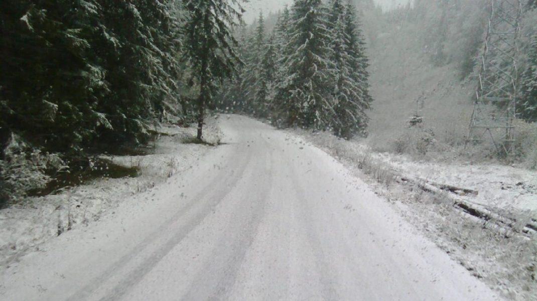 Zăpadă de 10 cm în Munții Făgăraș