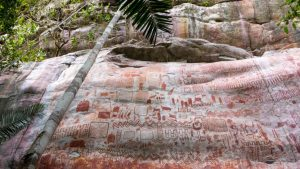 Comoara arheologică, descoperită în jungla din Columbia. Picturi murale din ultima Eră Glaciară
