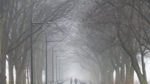 METEO, 19 decembrie. Vântul va sufla slab și moderat. Temperaturi maxime, între 2 și 9 grade Celsius