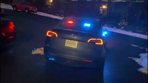 Tesla Politie