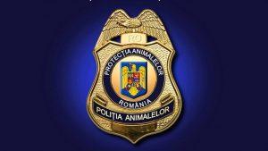 Bătaie pe posturile la Poliția Animalelor. 4.300 de oameni înscriși și doar 264 de poziții disponibile. Care sunt motivele