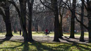 Oameni care se plimbă cu bicicleta în parc.