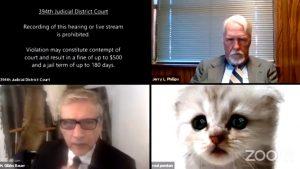 Video viral. Un avocat a apărut într-un proces pe Zoom cu un filtru de pisică