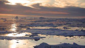 Au fost descoperite urme de viață sub gheața din Antarctica. Ce au găsit cercetătorii