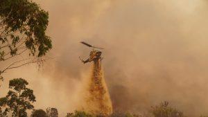 Incendii de vegetație în Australia. 300 de pompieri au luptat cu flăcările. Peste 70 de case distruse