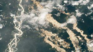 """FOTO. """"Râuri de aur"""", surprinse de NASA în pădurea amazoniană. Ce reprezintă de fapt"""
