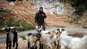Cemil-Çoban