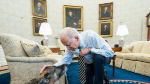 Câinele lui Joe Biden a muşcat din nou un angajat al Casei Albe, deși recent a fost trimis la dresaj