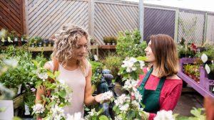 Cercetătorii au descoperit o metodă de a comunica cu plantele