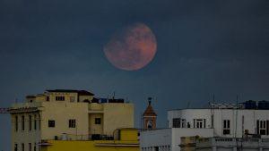 super luna roz