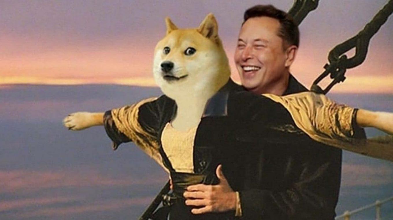 Elon Musk Dogecoin Meme / Elon Musk Posts Dogecoin Memes On Twitter ...