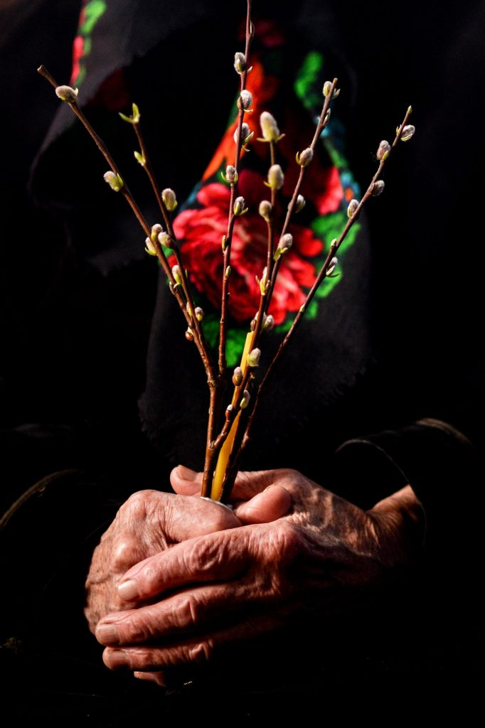 Femeie cu salcie în mână de Florii