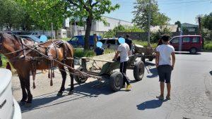 Ce au pățit mai mulți oameni care au trecut cu căruțele prin București. FOTO