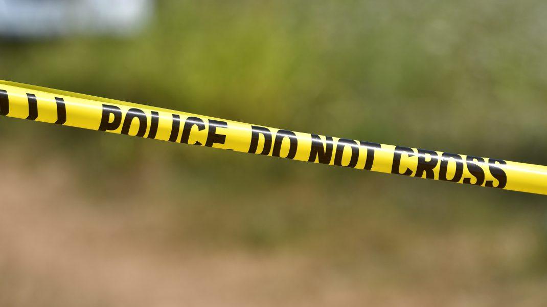 politia-crima