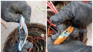 Cablurile roase de șoareci în București. Foto: Compania Municipală Managementul Traficului