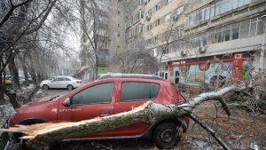 Sute de copaci și stâlpi, prăbușiți în urma vijeliei de vineri seara. Zonele afectate