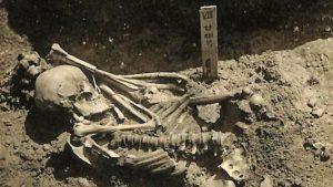 A fost descoperită cea mai veche victimă a unui atac de rechin. Scheletul are aproape 800 de răni