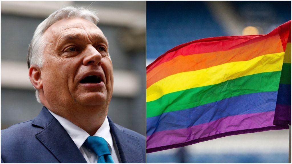 Colaj foto cu Viktor Orban și un drapel LGBT.