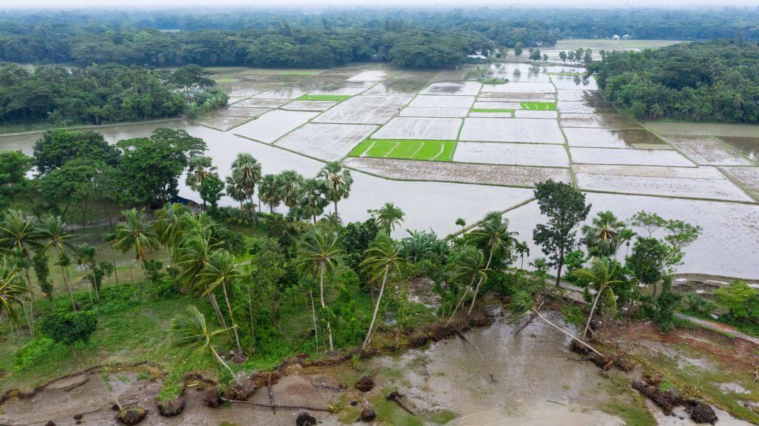 inundatii in bangladesh