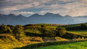 Colinele Transilvaniei