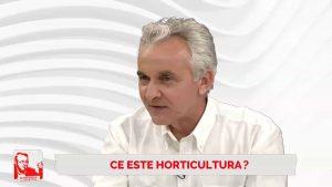 Florin Stănică