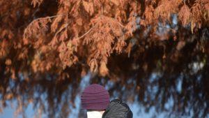 Un bărbat care se plimbă pe lângă un copac cu frunze ruginii.
