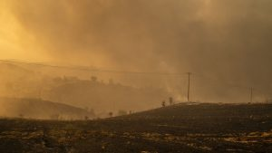 06 august 2021, Grecia, Afidnes: Fumul se ridică din pământul ars într-o zonă împădurită la nord de Atena. Încă de la primele ore ale dimineții, vânturile puternice dinspre vest au continuat să alimenteze numeroasele incendii de vineri. Foto: Al: Angelos Tzortzinis/dpa