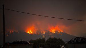 Incendiu în apropiere de capitala Atena, în Grecia, 5 august 2021. Foto: Hepta