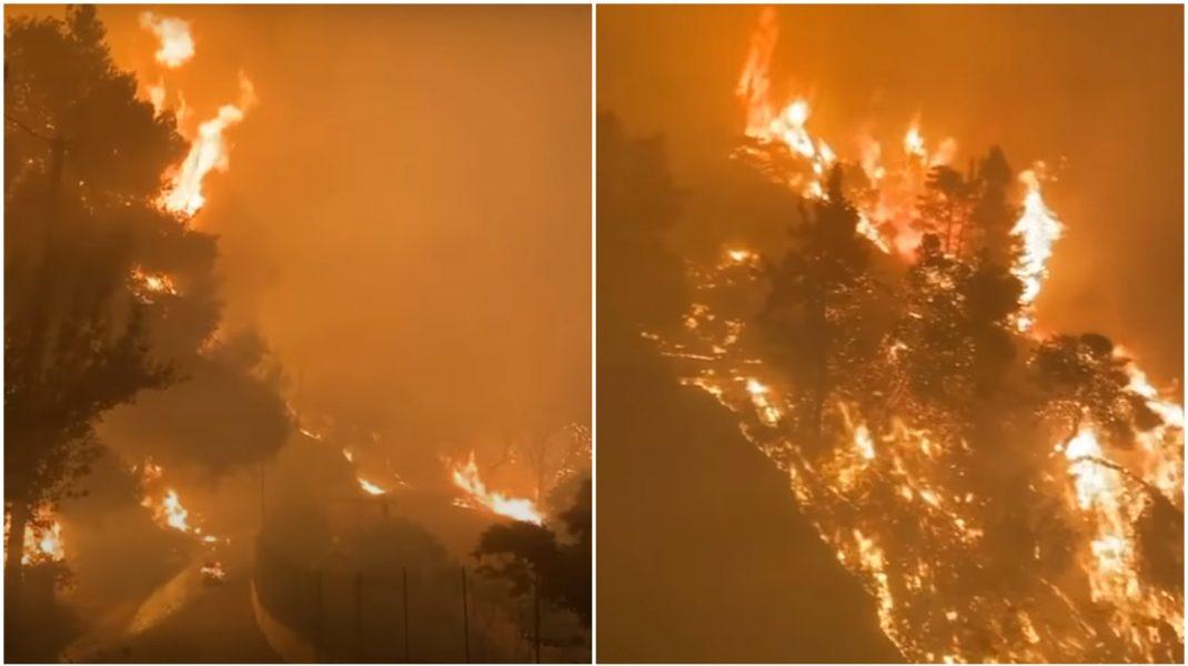Colaj foto cu imagini din curtea unui grec care încearcă să-și salveze casa din incendiul devastator.
