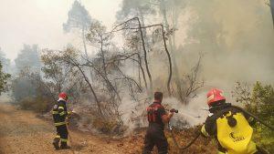 pompieri romani in lupta cu incendiile din grecia.