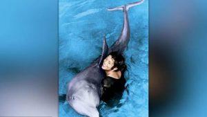 delfin-peter