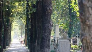 Alee cimitir Oradea