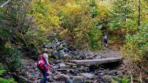 turisti in drumetie pe munte